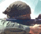 3D-Swat